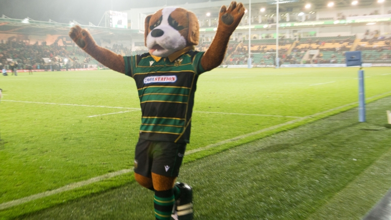 Bernie the Mascot Northampton Saints